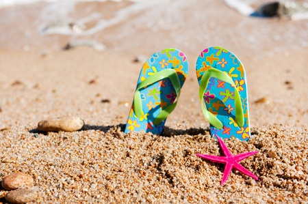flops: Flip flop sandals at the beach near the water line