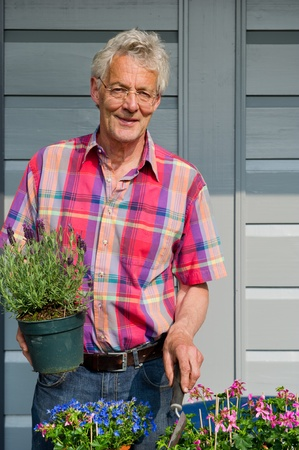 Elderly man is working with plants in the garden photo