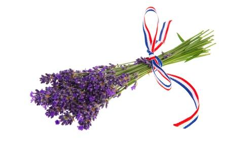 Purple bouquet Lavender flowers on white background photo