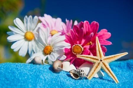 beach towel: Tropical wellness with sea life and flowers Stock Photo