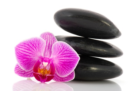 Stack black hot stones with pink Orchid  isolated over white background photo