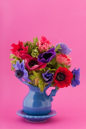 Colorful bouquet Anemones in vase on pink background photo