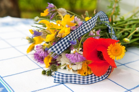 Colorful bouquet wild flowers with Poppies and ribbon Stock Photo - 12014662