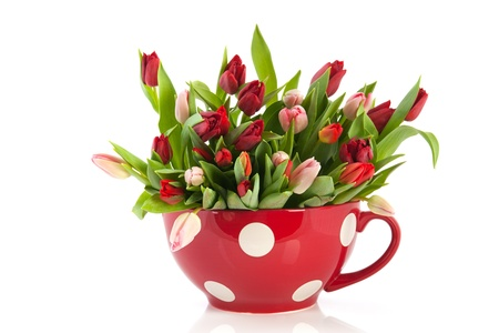 mixed flower bouquet: Big dotted red cup full with colorful tulips