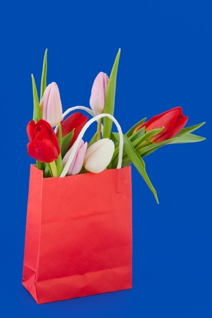 shopping bag with bouquet colorful tulips on blue background photo