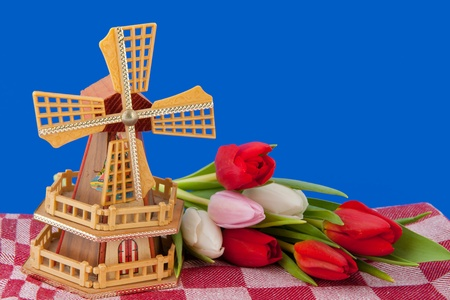 Dutch windmill and bouquet tulips on blue background photo