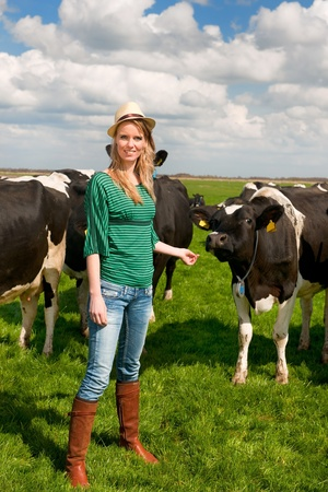 Young blond Dutch girl in farm field with black and white cows Stock Photo - 13235694