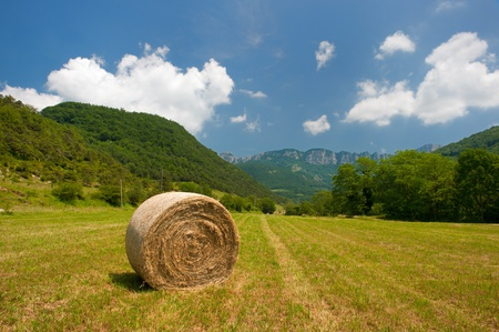 Round straw bales in French landscape photo
