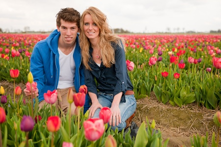 Couple Dutch tourists are plucking tulips in the flower fields photo