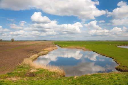 polder: Typical Dutch landscape with lake and clouds in the polder