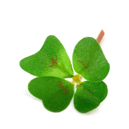 Clover four from textile isolated over white background Stock Photo - 13863277