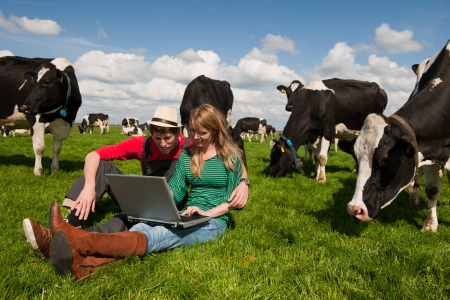 black and white farm: Young couple farmers in farm field with laptop and black and white cows Stock Photo