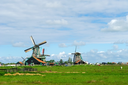 Dutch windmills in landscape at the Zaanse Schans photo
