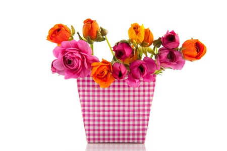 buttercups: Colorful bouquet buttercups in pink checked flower pot Stock Photo