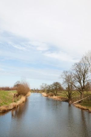 pollard: Typical Dutch ditch with pollard willows in spring Stock Photo