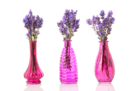 Row With Pink Vases Lavender Twigs Stock Photo Picture And Royalty