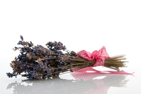 Bouquet of French lavender from the Provence photo