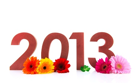 Ciphers with 2013 and flowers isolated over white background photo