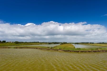 salina: Landscape with salt lake at French Oleron island Stock Photo