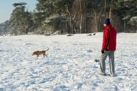 Man walking with dog in snow in nature photo