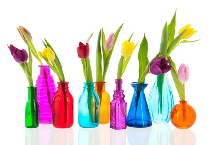 blue tulip: colorful tulips one by one in different glass vases