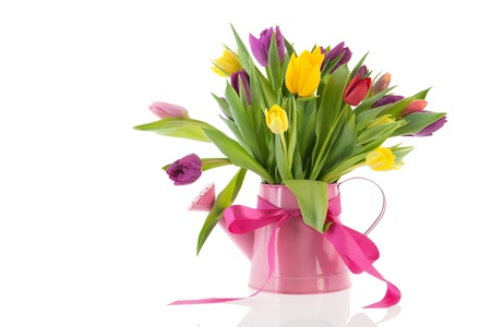 cut flowers: watering can with colorful bouquet birthday tulips in spring Stock Photo