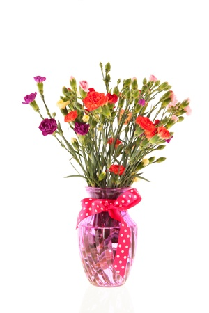Colorful bouquet Dianthus in pink glass vase isolated over white background photo