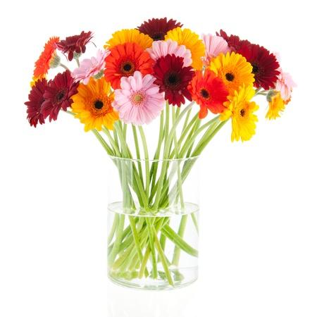 Blumenstrauß Gerber Blumen in Glasvase auf weißem Hintergrund Isoliert