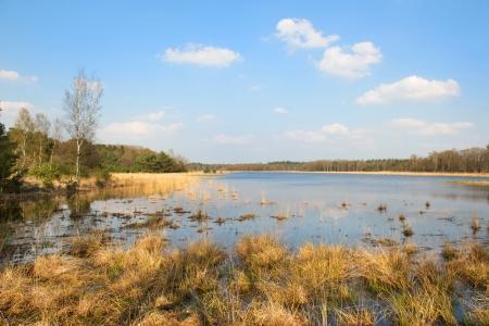 plassen: landscape in Holland at the Leersumse Plassen