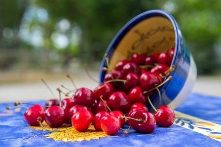 fallen fruit: Bowl full fresh cherries outdoor