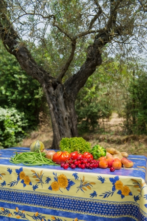Vegetables and fruit in French garden with olive tree photo