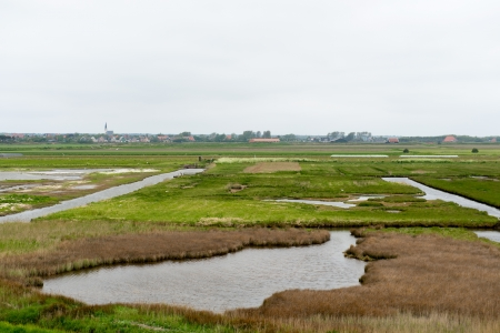 wadden: protected bird lake on Dutch wadden island Texel Stock Photo
