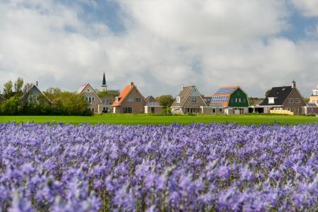 hoorn: Small village Den Hoorn with white church at Dutch wadden island Texel
