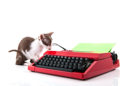 Little cat with red typewriter photo