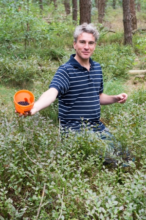 Man proud while picking blueberries in the forest photo