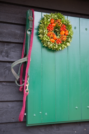 reins: Several horse reins hanging at green wooden stable door outside Stock Photo