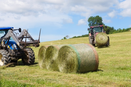 Tractor oogstrollen gras in het landbouw landschap Stockfoto