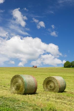 Tractor oogsten rolt gras in het agrarische landschap Stockfoto