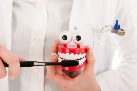 Female dentist with tooth brush and denture showing how to do isolated over white