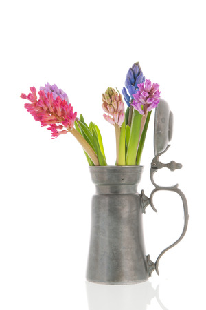 hyacinths: Bouquet colorful Hyacinths in antique tin vase