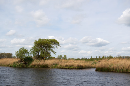 eem: Landscape in Dutch polder Arkemheen  Stock Photo