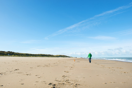 old man walking: Man walking with dog at the beach in Dutch Renesse