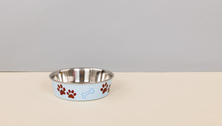 dead dog: Food bowl for dog with sadness because of the dead pet