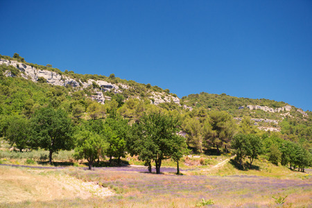 luberon: Landscape in French Luberon with mountains and lavender