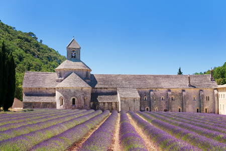 Abbey with lavender fields in French Senanque photo