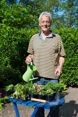 Senior man is working in the garden photo
