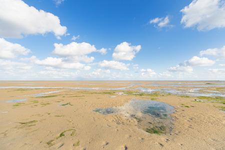 wadden sea: Mudflat or shallow at Dutch wadden sea near Terschelling Stock Photo