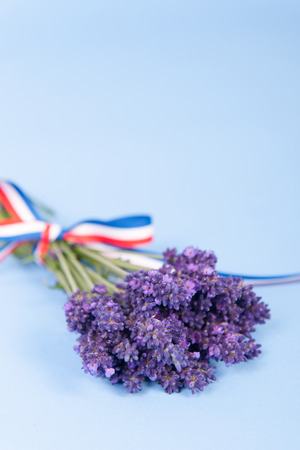 Bouquet French Lavender with flag ribbon on blue background photo