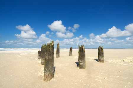 dutch typical: Old wooden poles near the waterline at the beach from Dutch wadden island Terschelling Stock Photo