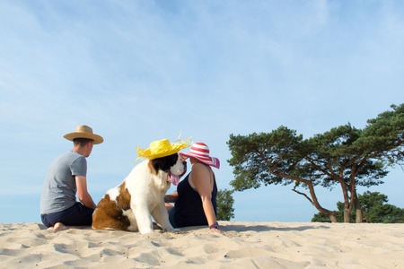 soest: Family with their big dog at the beach Stock Photo